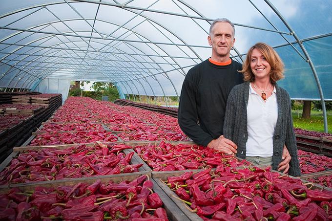 Producteur de Piment d'Espelette, Vincent et Edith Darritchon